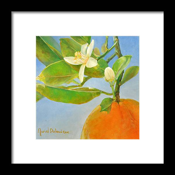 Acrylic Painting Framed Print featuring the painting Orange en Coin by Muriel Dolemieux