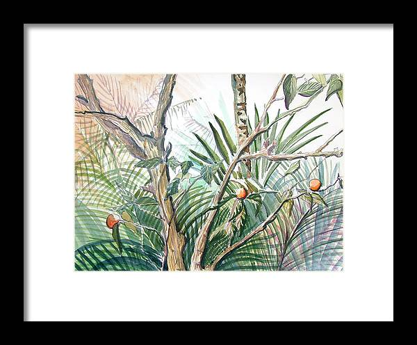 Fruit Framed Print featuring the painting Orange Tree by Mindy Newman