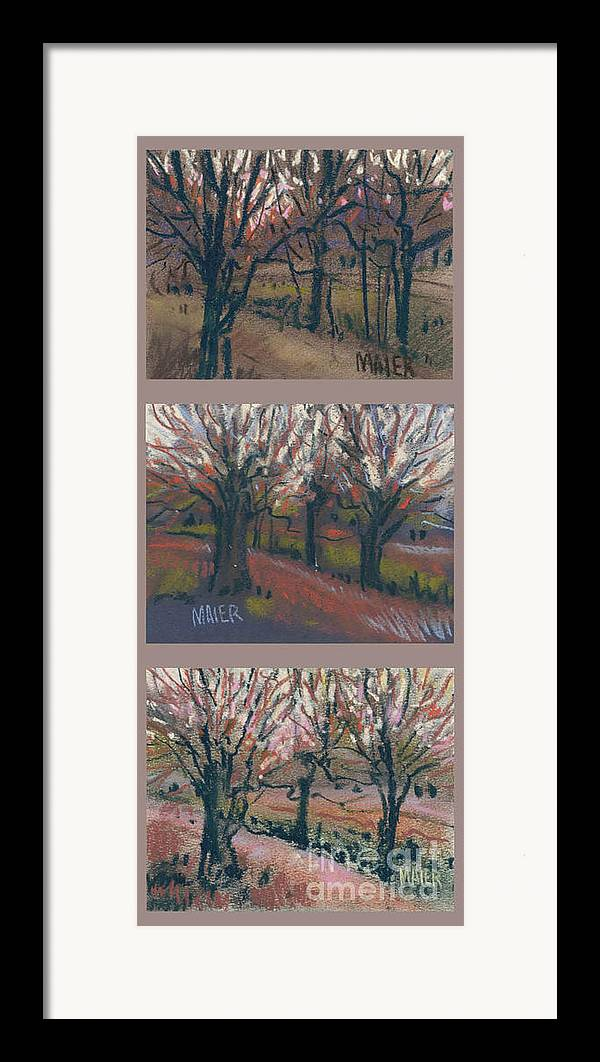 Pastel Framed Print featuring the drawing Orchard Sunset by Donald Maier