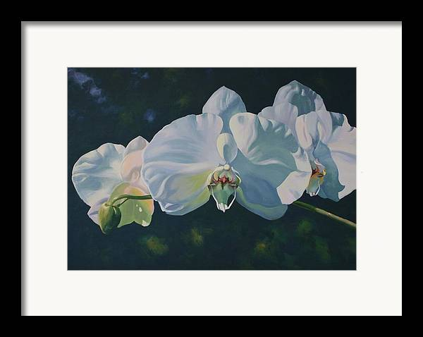Acrylic On Canvas Framed Print featuring the painting Orchid Song by Michael Vires