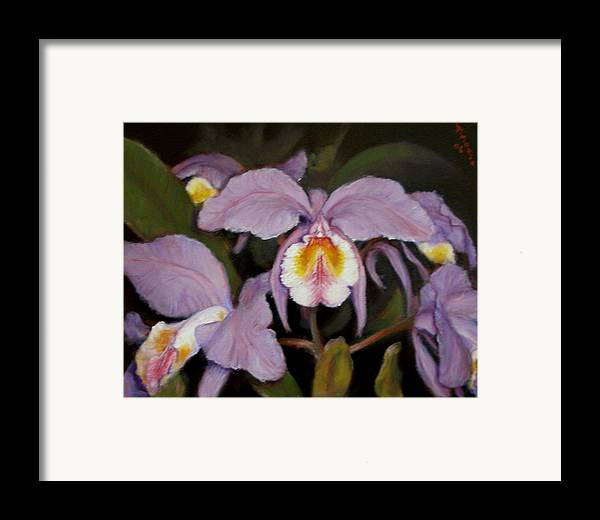 Realism Framed Print featuring the painting Orchids by Donelli DiMaria