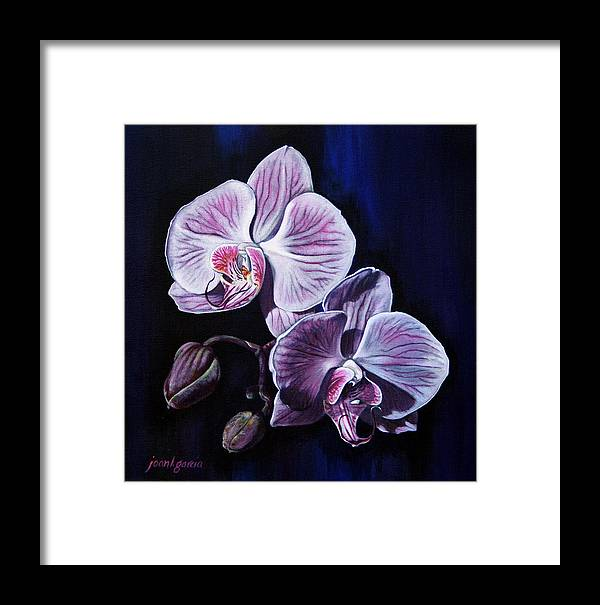 Flowers Framed Print featuring the painting Orchids II by Joan Garcia