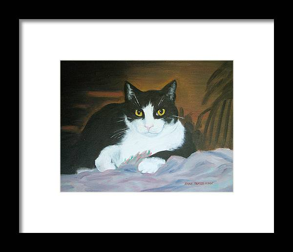 Cat Framed Print featuring the painting Oreo by Anne Trotter Hodge