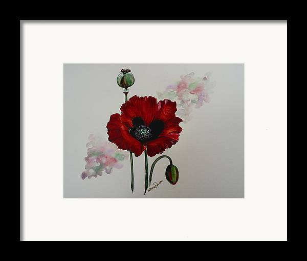 Floral Poppy Red Flower Framed Print featuring the painting Oriental Poppy by Karin Dawn Kelshall- Best