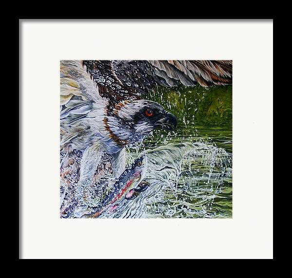 Osprey Framed Print featuring the painting Osprey by Donald Dean