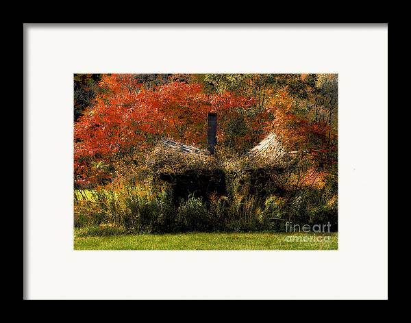 House Framed Print featuring the photograph Ouch by Lois Bryan
