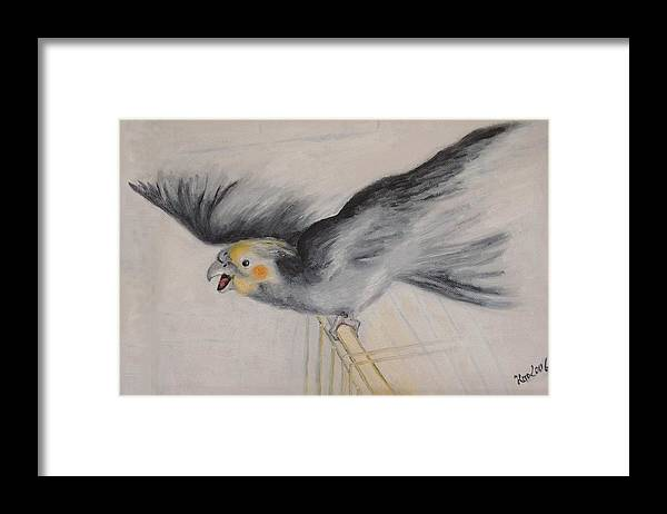 Cockatiel.pet Framed Print featuring the painting our cockatiel Coco by Helmut Rottler
