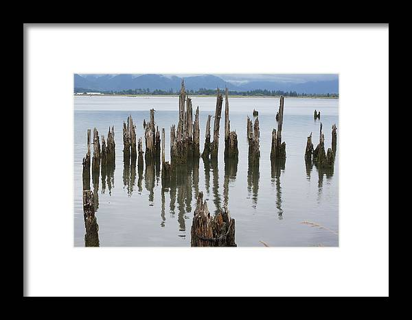 Bay Framed Print featuring the photograph Out In The Bay by Angi Parks