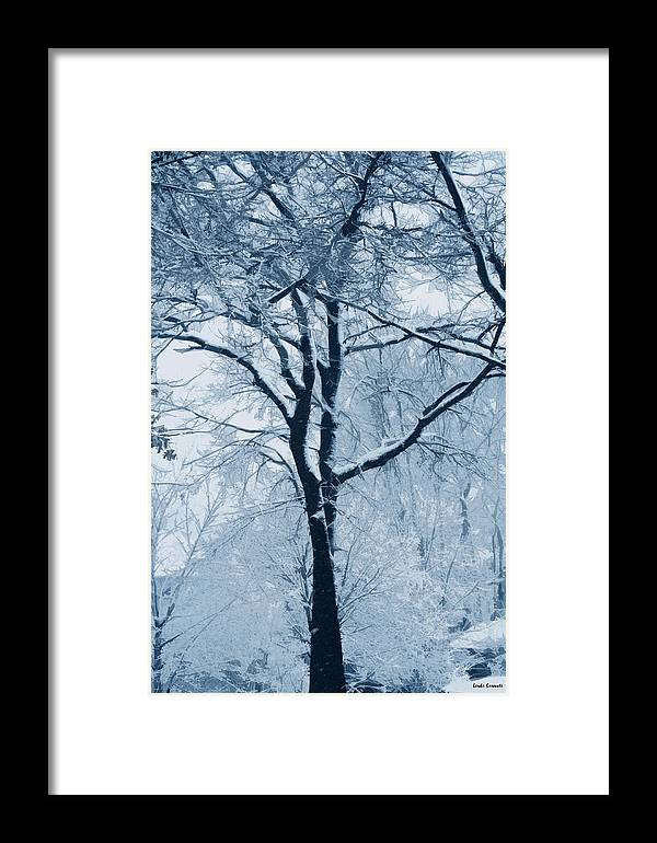 Trees Framed Print featuring the photograph Outside My Window by Linda Sannuti