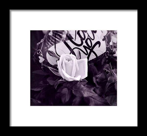 Valentine Day Framed Print featuring the photograph Outstanding Lover by Peg Donnellan