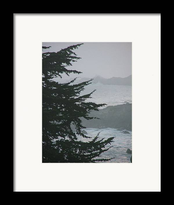 Sea Scape Framed Print featuring the photograph Pacific Grove Early Am by Donna Thomas