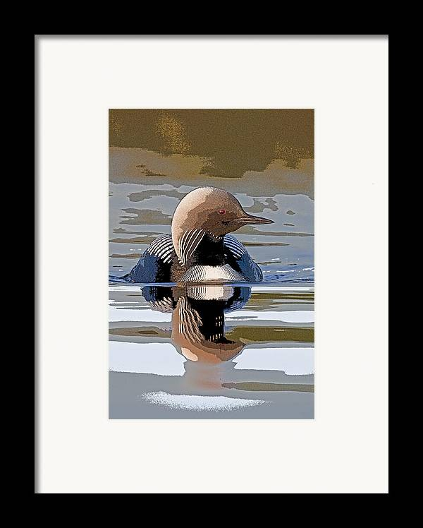 Abstract Framed Print featuring the photograph Pacific Loon Making Waves- Abstract by Tim Grams