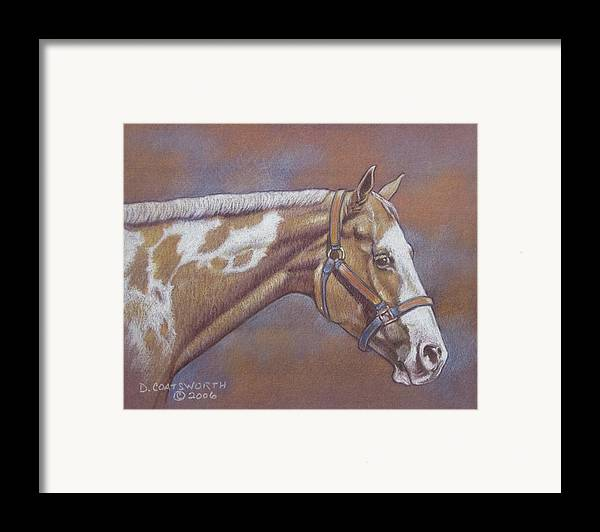 Framed Print featuring the painting Paint Horse by Dorothy Coatsworth