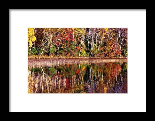 Autumn Framed Print featuring the photograph Paint Like Nature by Mitch Cat