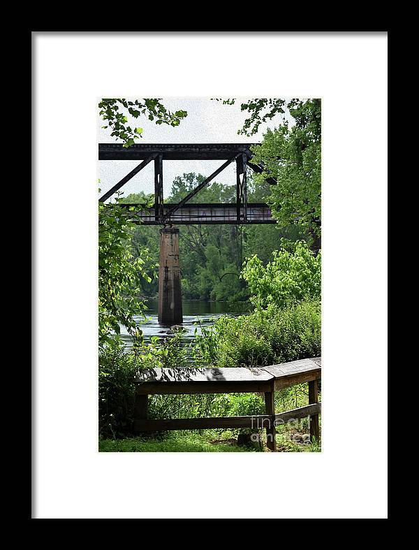Plants Framed Print featuring the photograph Painted Congaree Four by Skip Willits