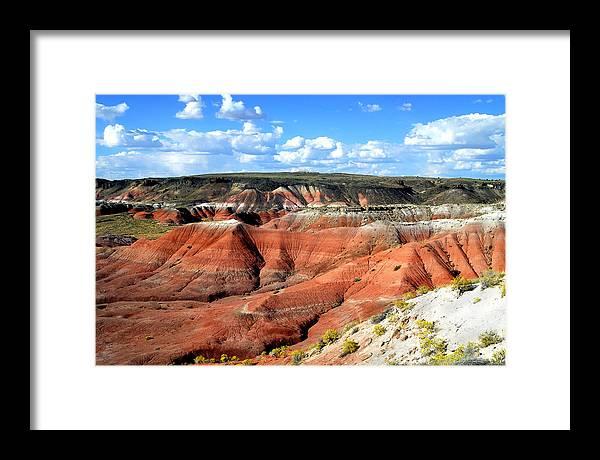 Desert Framed Print featuring the photograph Painted Desert by Barry Shaffer