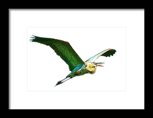 Bird Flying Framed Print featuring the photograph Painted Flight by Danielle Sigmon