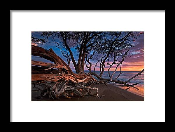 Maui Hawaii Tree Sunset Olowalu Ocean Nature Framed Print featuring the photograph Painted Tree by James Roemmling