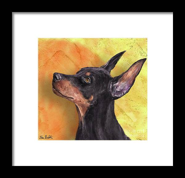 Dog Framed Print featuring the digital art Painting Of A Cute Doberman Pinscher On Orange Background by Idan Badishi
