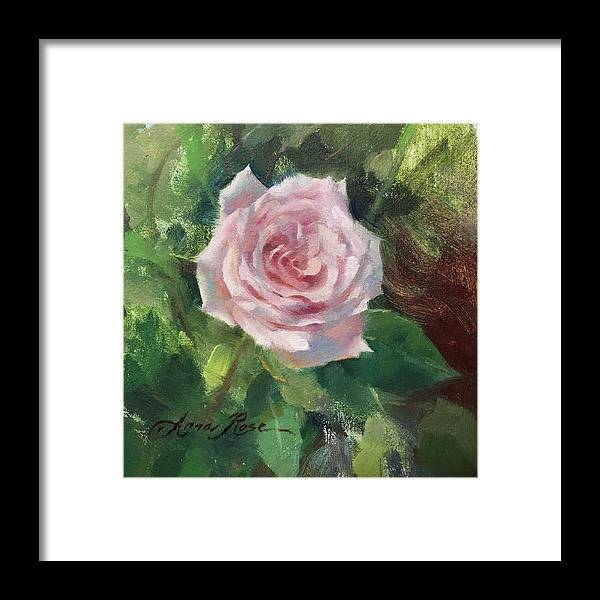 Rose Framed Print featuring the painting Pale Rose Study by Anna Rose Bain