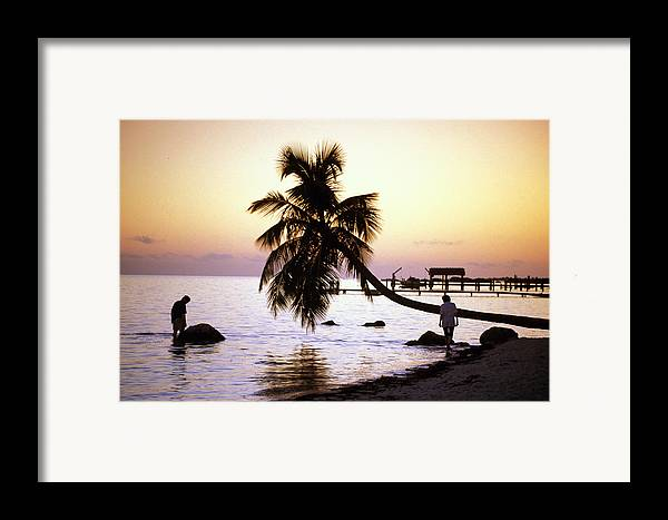 Sunset Framed Print featuring the photograph Palm At The Moorings by Carl Purcell