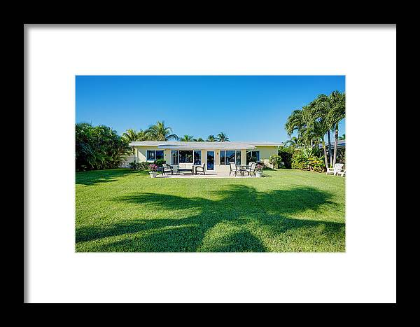Palmtree Framed Print featuring the photograph Palm Back Yard by Jody Lane