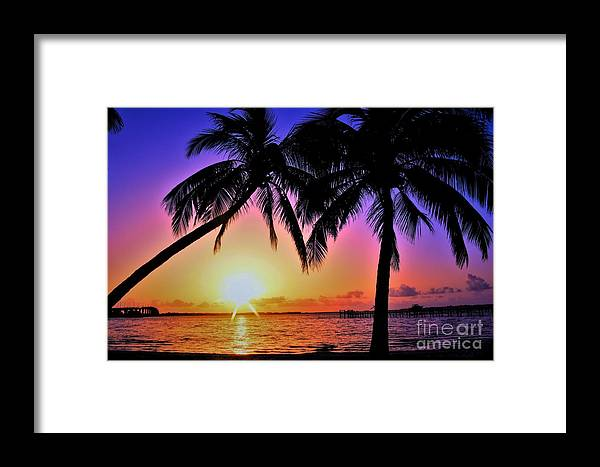 Palm Bliss Framed Print featuring the photograph Palm Bliss by Lisa Renee Ludlum