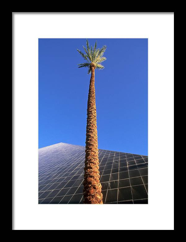 Blue Sky Framed Print featuring the photograph Palm Tree And Luxor by Rich Iwasaki