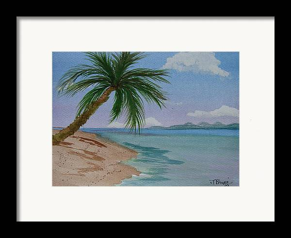 Palm Tree Framed Print featuring the painting Palm Tree by Dottie Briggs