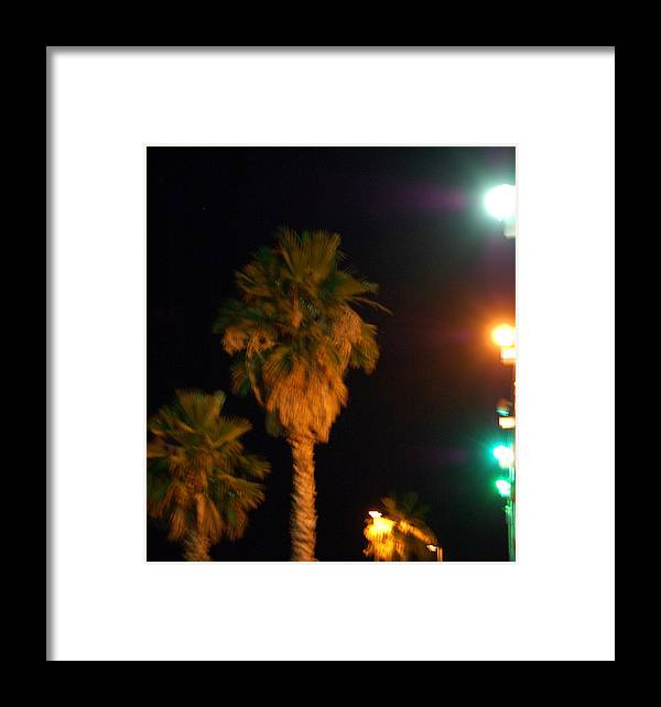 Palm Tress Framed Print featuring the photograph Palm Tree Glow by Heather S Huston