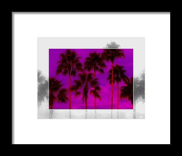 Palm Framed Print featuring the photograph Palm Tree Heaven by Kenneth Krolikowski
