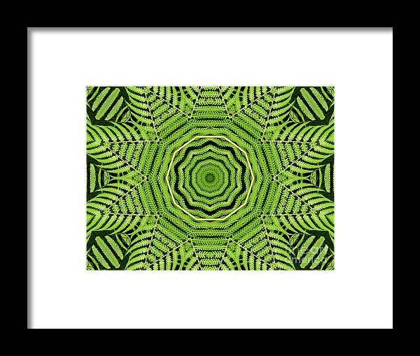 Palm Tree Framed Print featuring the photograph Palm Tree Kaleidoscope Abstract by Rose Santuci-Sofranko