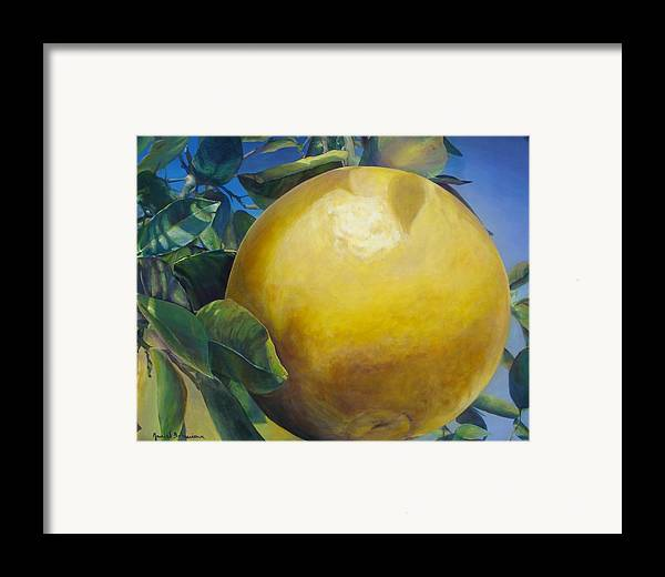 Floral Painting Framed Print featuring the painting Pamplemousse by Muriel Dolemieux