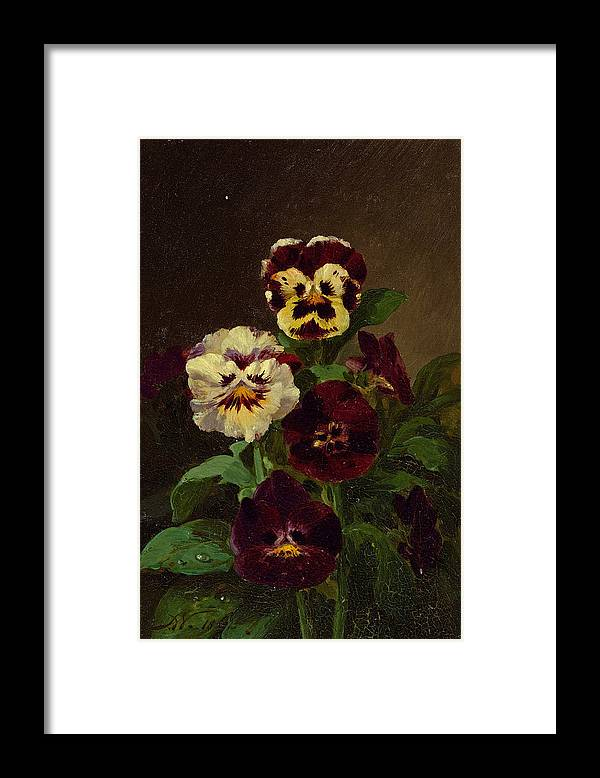 John Williamson Framed Print featuring the painting Pansies by John Williamson