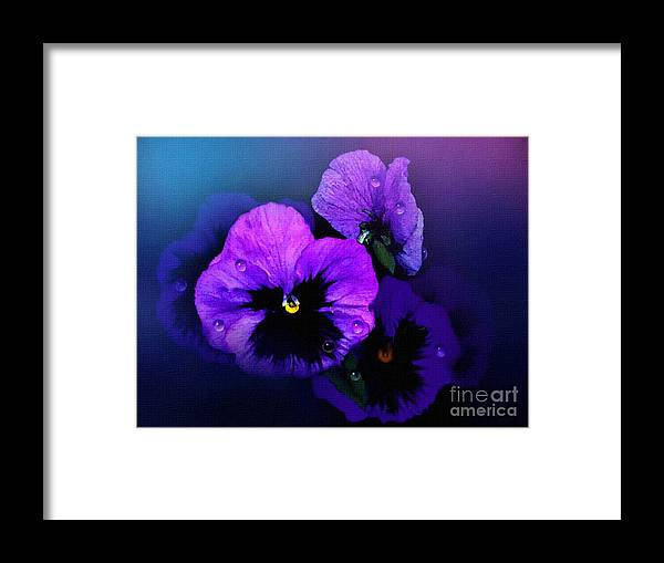 Pansy Framed Print featuring the painting Pansys by Robert Foster