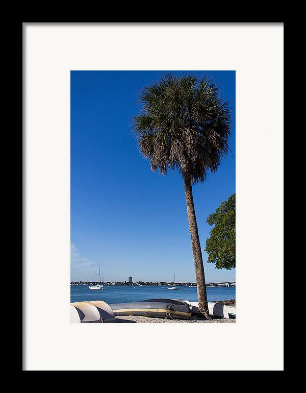 Marina Jacks Framed Print featuring the photograph Paradise In Sarasota, Fl by Michael Tesar