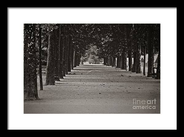 Black And White Framed Print featuring the photograph Paris, Sunday Morning by Michael Ziegler