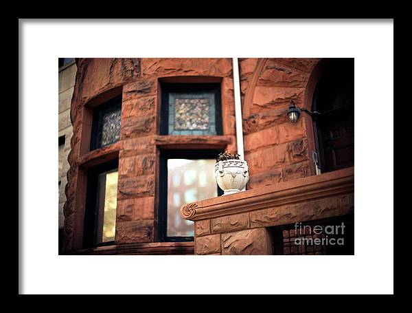 Park Slope Planter Framed Print featuring the photograph Park Slope Planter by John Rizzuto