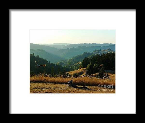 Impressionistic Framed Print featuring the photograph Part II Wild Turkeys Taking Flight by JoAnn SkyWatcher