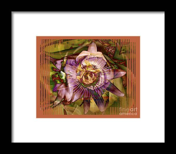 Flower Framed Print featuring the photograph Passion by Chuck Brittenham