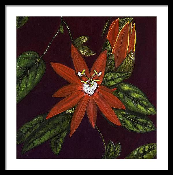 Flower Framed Print featuring the painting Passion Flower by Rita Cortesi