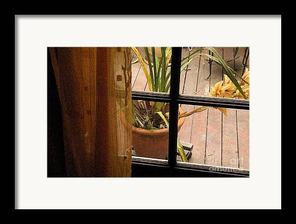 Flower Framed Print featuring the photograph Past The Curtain by Michael Ziegler