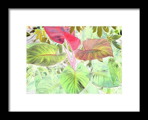 Framed Print featuring the digital art Pastel Hearts by Robert McPeek