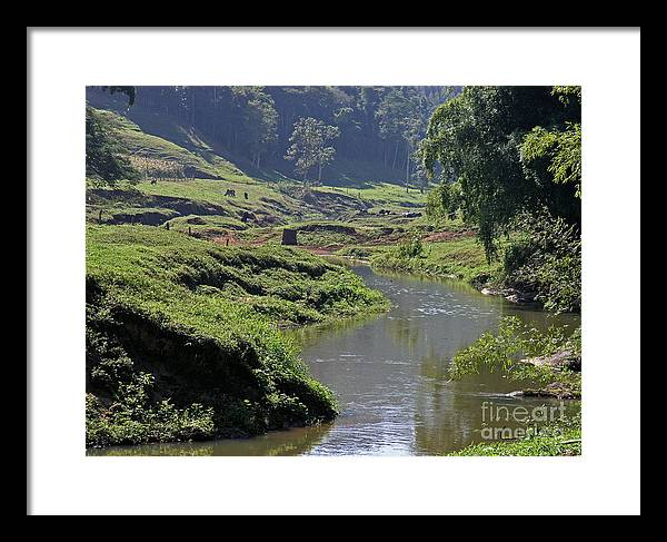 Country Framed Print featuring the photograph Pastorale 1 by Carlos Alvim