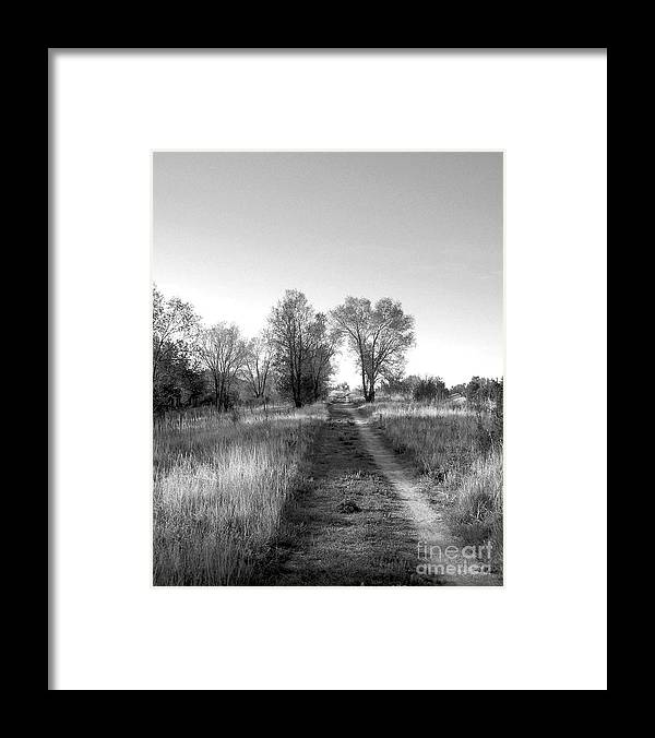 Black Framed Print featuring the photograph Path Yet Taken by Jack Norton