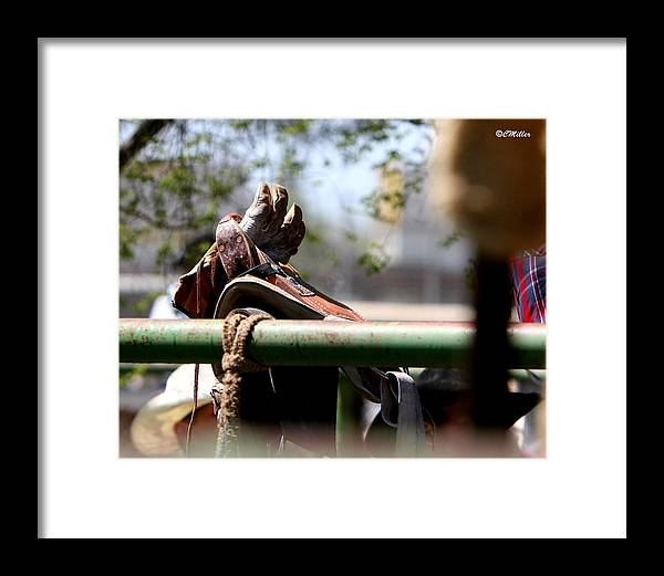 Rodeo Framed Print featuring the photograph Patiently Waiting by Carol Miller