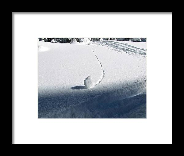 Snow Framed Print featuring the photograph Patterns 16 by Sean Griffin