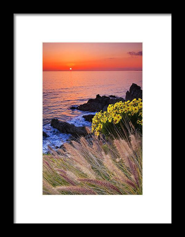 Beaches Framed Print featuring the photograph Pch Sunset by Greg Clure