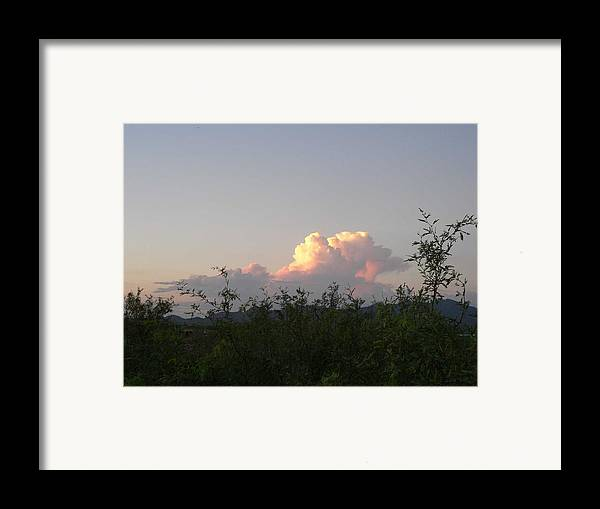Photography Framed Print featuring the photograph Peace by Cynthia Ann Swan
