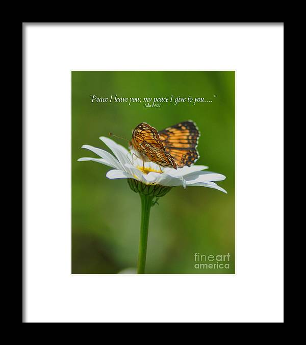 Diane Berry Framed Print featuring the photograph Peace I Leave You by Diane E Berry